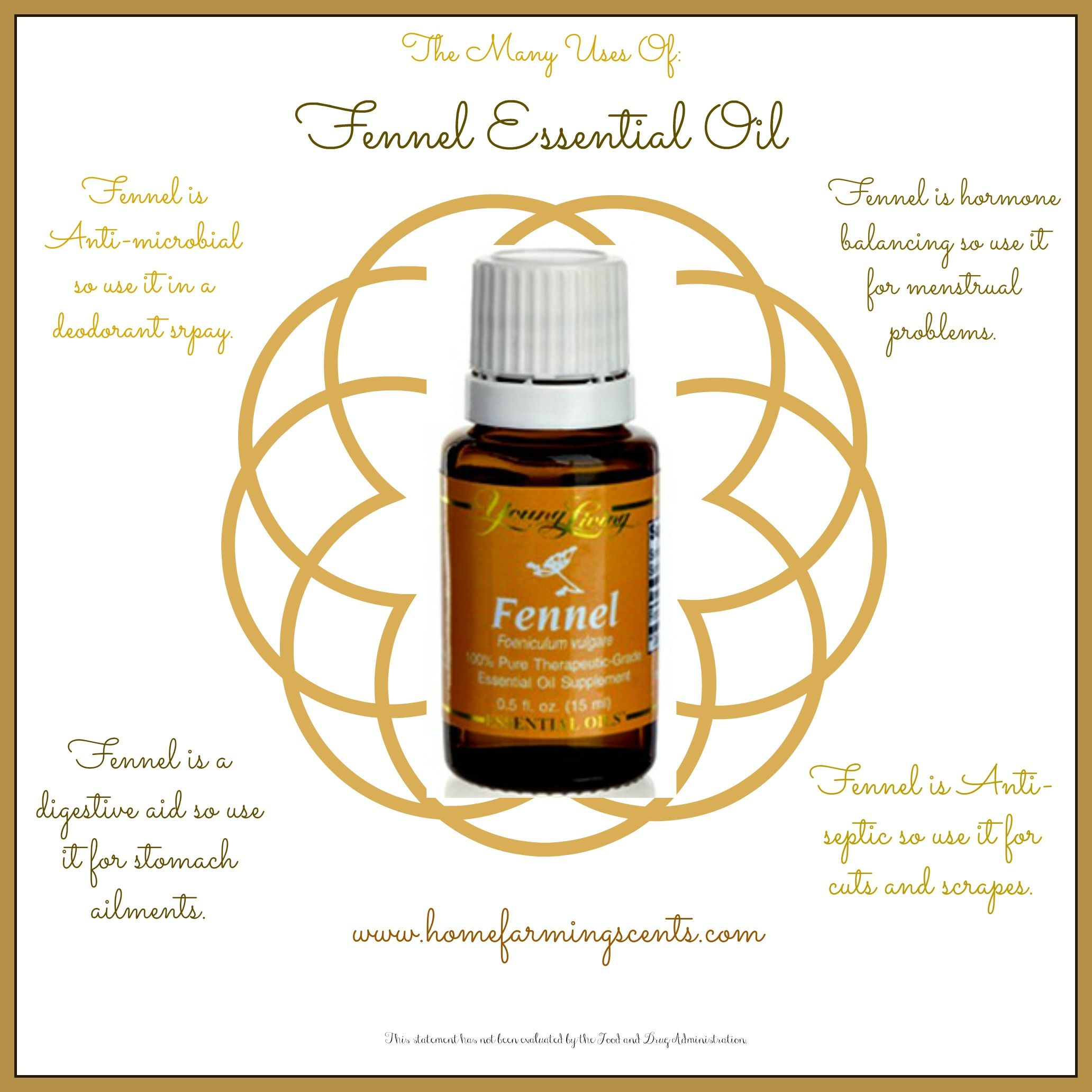 Pin By Petrea Plum On Oils T Essential Oils Doterra