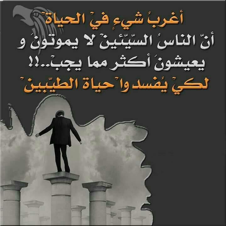 مجربينها Favorite Quotes Arabic Quotes Words
