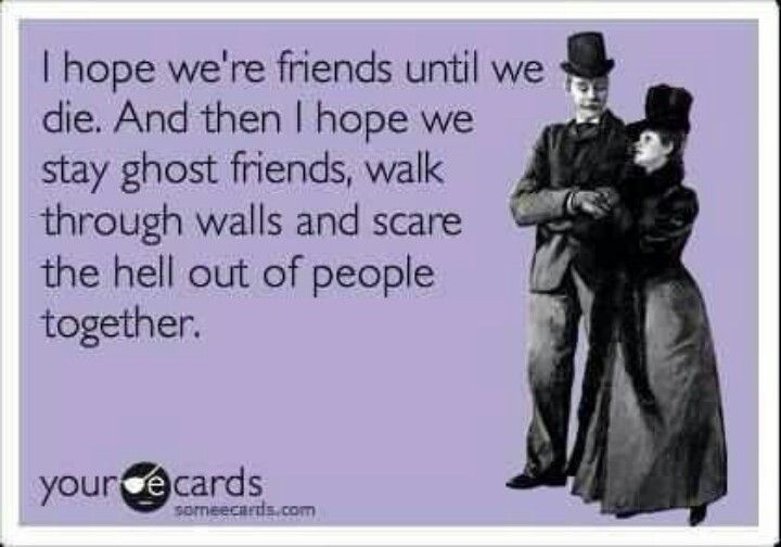 To my pals.