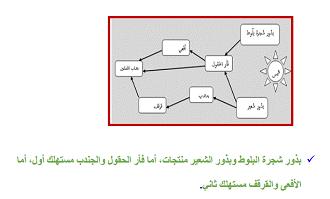 افكار وسائل تعليمية لمادة العلوم ابتدائي مجسمات للعلوم بالعربي نتعلم Kids Education Science Lessons Kids Learning