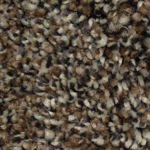 Accolade Fleck I Carpet Flooring In Okc First Step Flooring Grey Carpet Best Carpet Carpet Colors