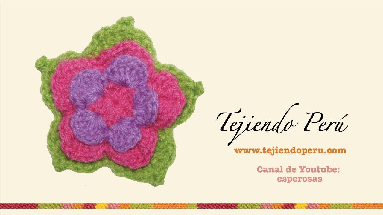 Lujoso Loto Patrón De Flores De Ganchillo Elaboración - Manta de ...