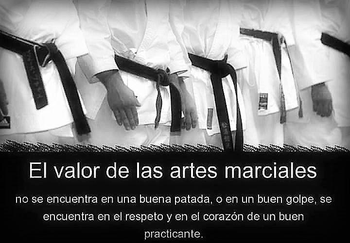 El Valor Marcial Y Filosofico Del Taekwondo Imagenes De
