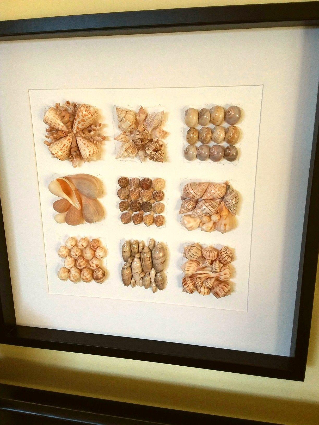 Sea shells framed memories Marco Sanibel beach beachy decor ...