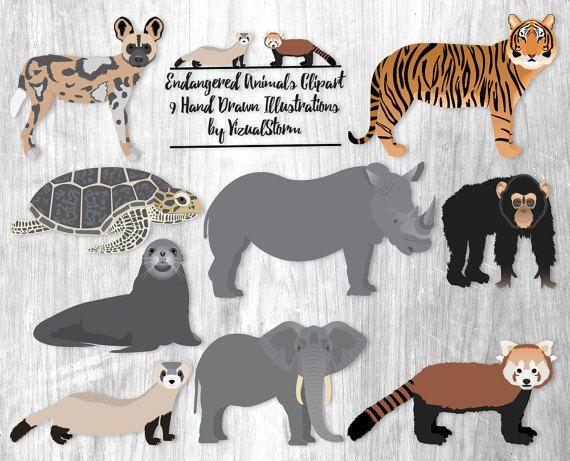Endangered Wildlife Clipart Animal Species In Danger Tiger Etsy Animal Clipart Endangered Animals African Animals