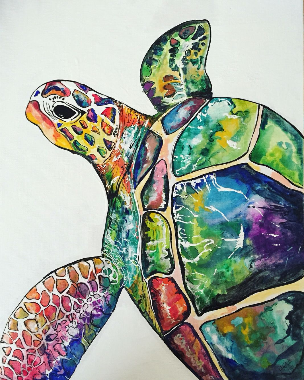 beautiful colorful sea turtle painting on white canvas. lots of