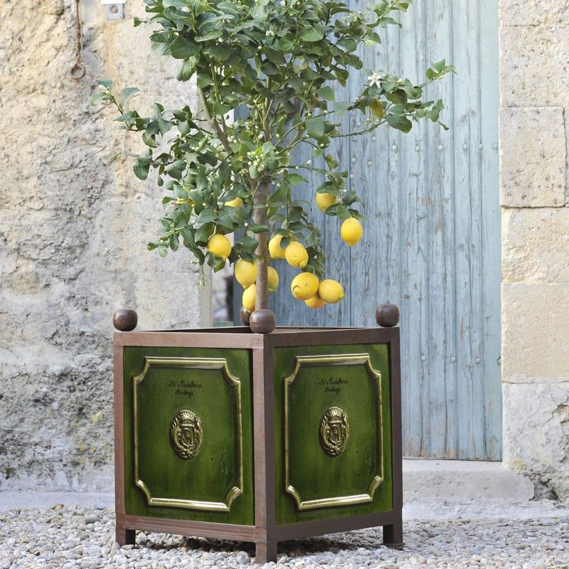 bac oranger maill tradition vert poterie de la madeleine anduze poterie de la madeleine. Black Bedroom Furniture Sets. Home Design Ideas