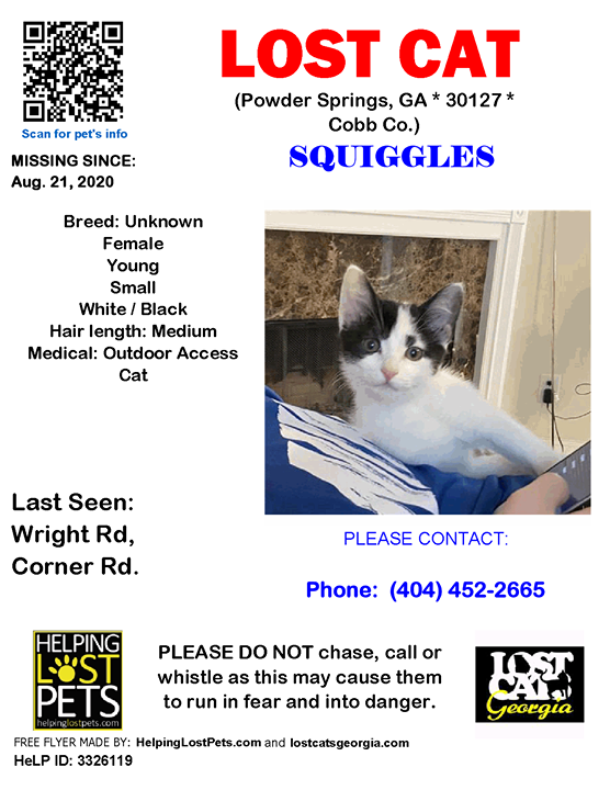 Lost Cat Powder Springs Ga Aug 21 2020 Closest Intersection Wright Rd Corner Rd County Cobb Lostcat Squiggles Powde In 2020 Lost Cat Losing A Pet Cat Powder