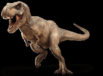 Tyrannosaurus Rex Dinosaur Images Dinosaur Pictures Jurassic Park T Rex