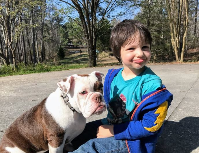 Pin By Rica Miller On It Takes A Family To Train A Family Dog