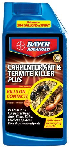 18 Ways To Get Rid Of Carpenter Bees How To Control Wood Bees Carpenter Bee Wood Bees Carpenter Bee Spray