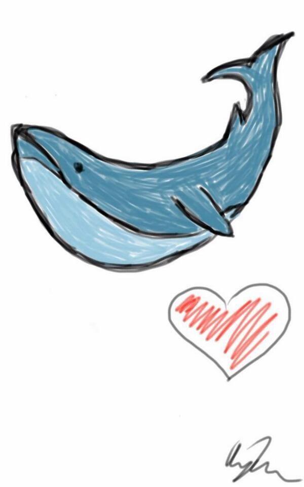 sassy_whale_by_namelessnitrogen-d75p3p5.jpg (600×960)