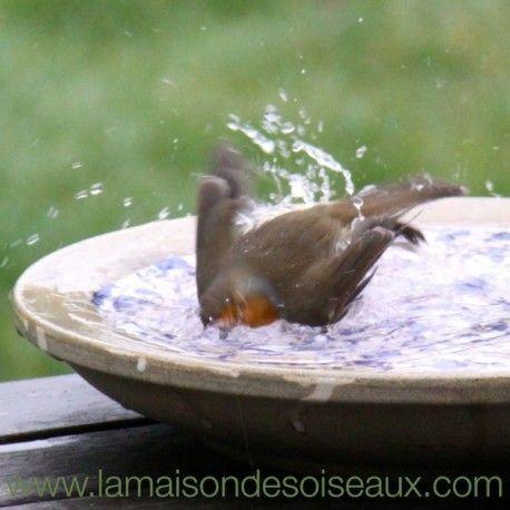 Grande vasque abreuvoir bain d\'oiseau en terre cuite émaillée ...