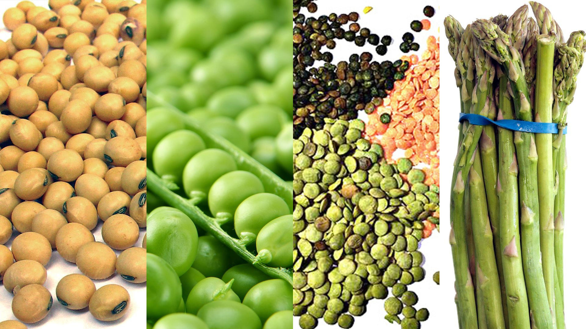 8 High Protein Vegetables