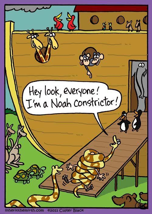 Noah constrictor | Laughing in Church | Pinterest | Humor ...