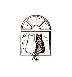 Katzen im Fenster