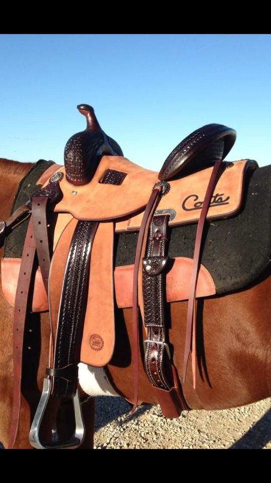 Coats Saddlery Barrel Saddle | tack | Horse saddles, Saddles