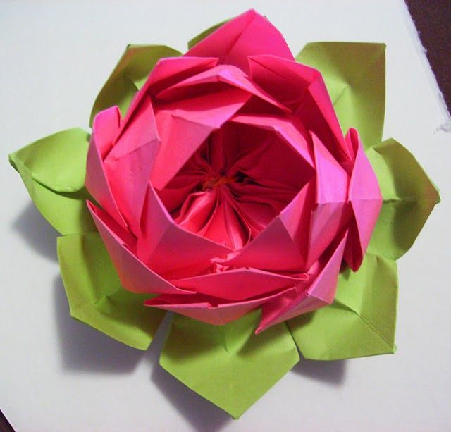 Lotus flower origami paper projects pinterest origami lotus lotus flower origami mightylinksfo Choice Image