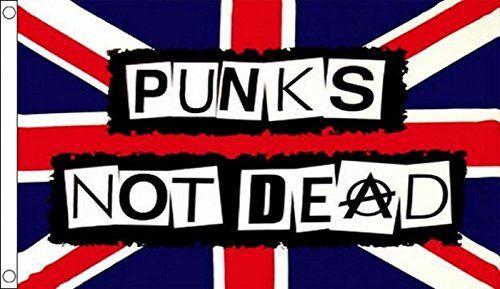 Amazon Com Ramones Punks Not Dead Anarchy Flag 5 X3 Patio Lawn Garden Punks Not Dead Punk Music Punk Subculture