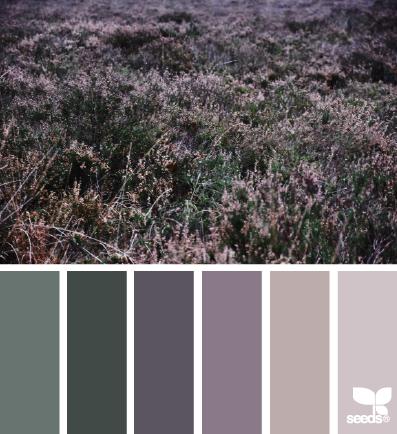 color field | design seeds | Bloglovin'