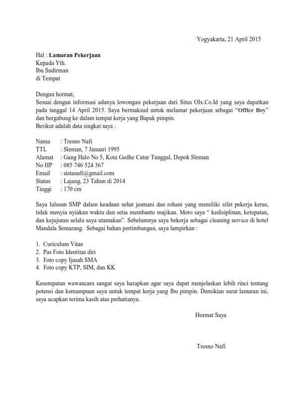 Plantillas para curriculum vitae en ingles gratis photo 2