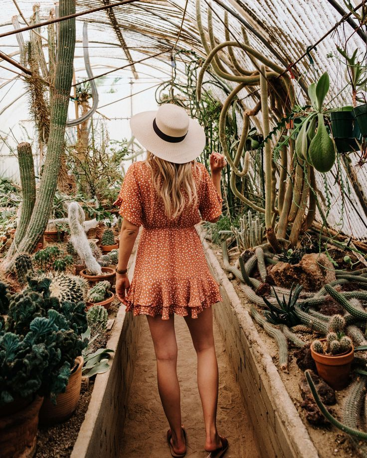 The Ultimate Guide to Palm Springs Instagram Spots - #guide #instagram #Palm #Spots #Springs #Ultimate #botanicgarden