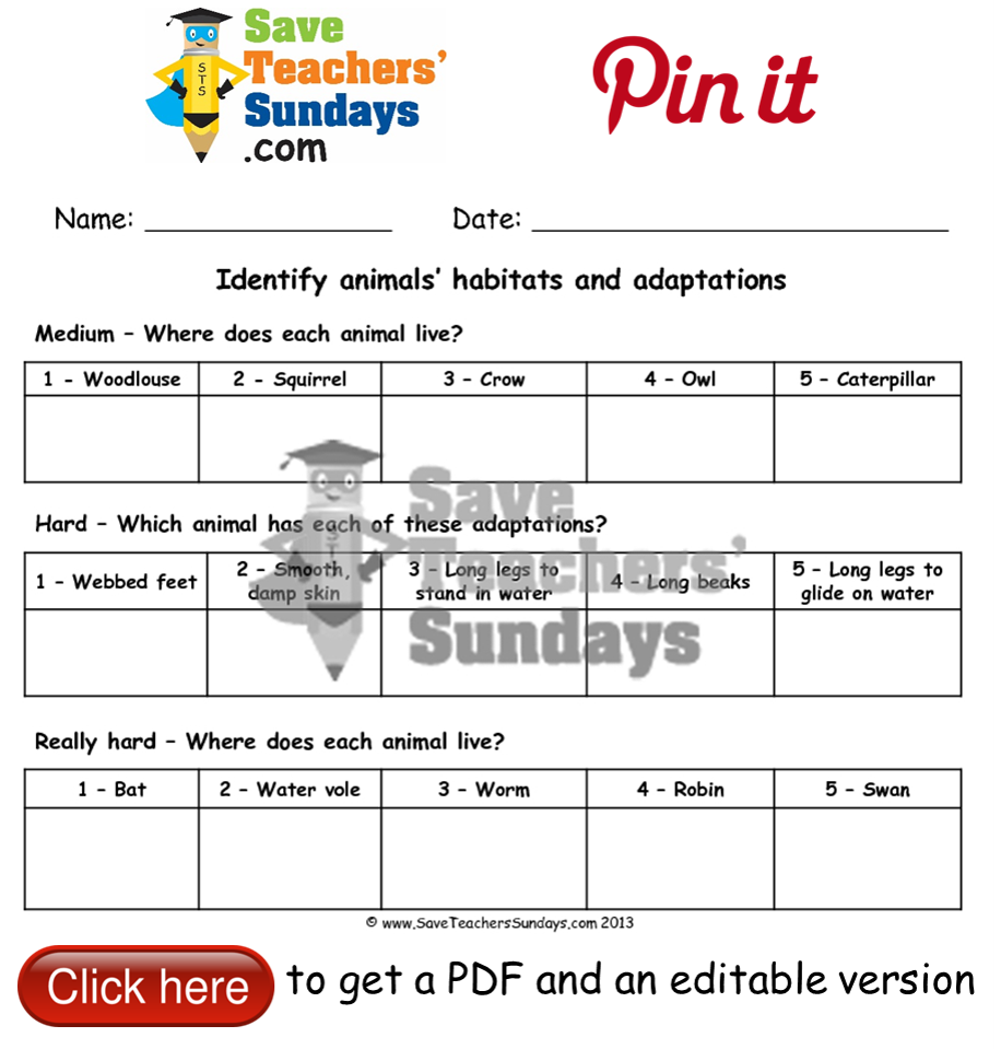 Online activities on animals and their habitats worksheet. G ...