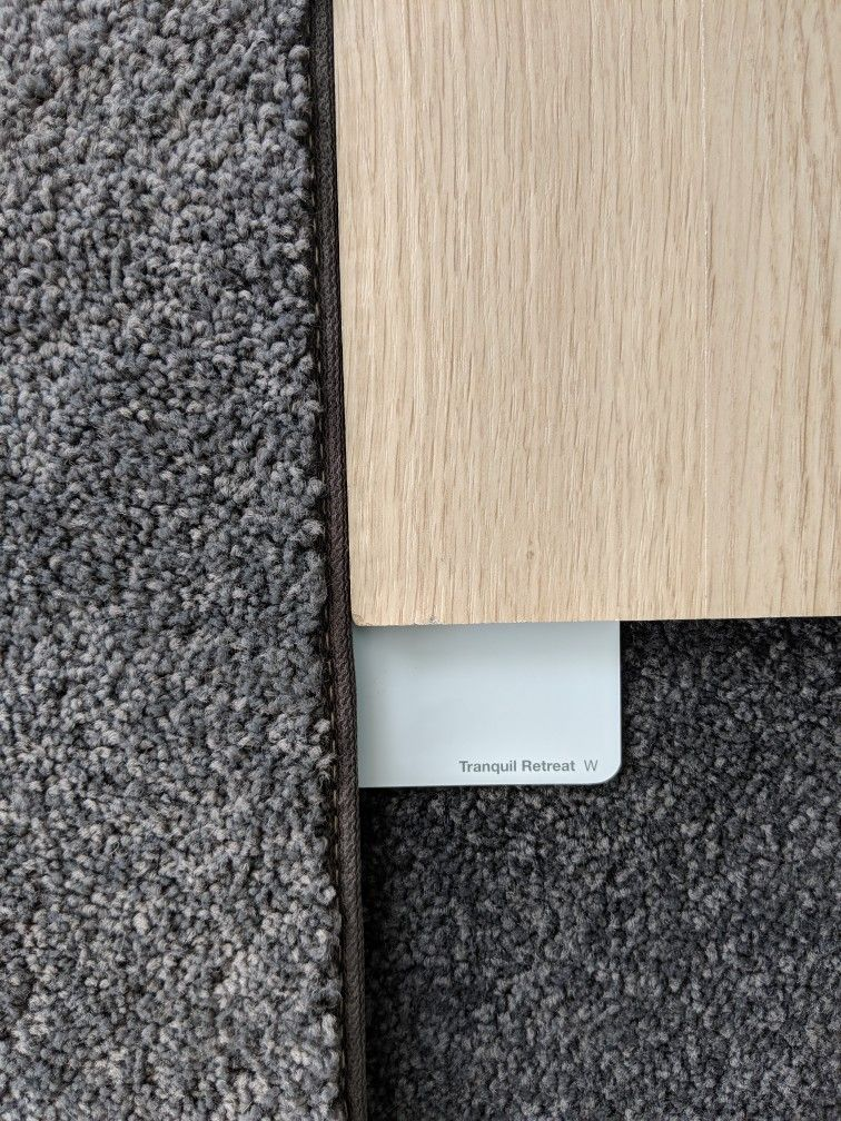 Flooring And Wall Colours I Ll Be Using Dulux Tranquil Retreat 1 2 Strength Instead White Oak Lam Bedroom Carpet Colors Carpet Colors Grey Carpet Living Room