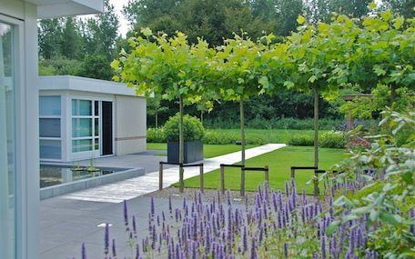 Grote strakke tuin bij villa in lelystad van veen for Tuinontwerpen utrecht