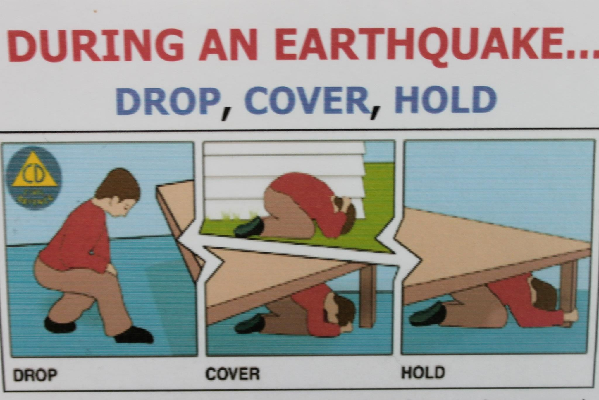 During An Earthquake Drop Cover Hold