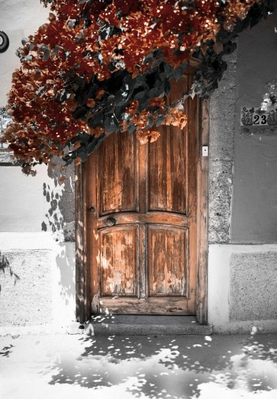 Gyclli Beautiful Doors Photo Aesthetic Wallpapers