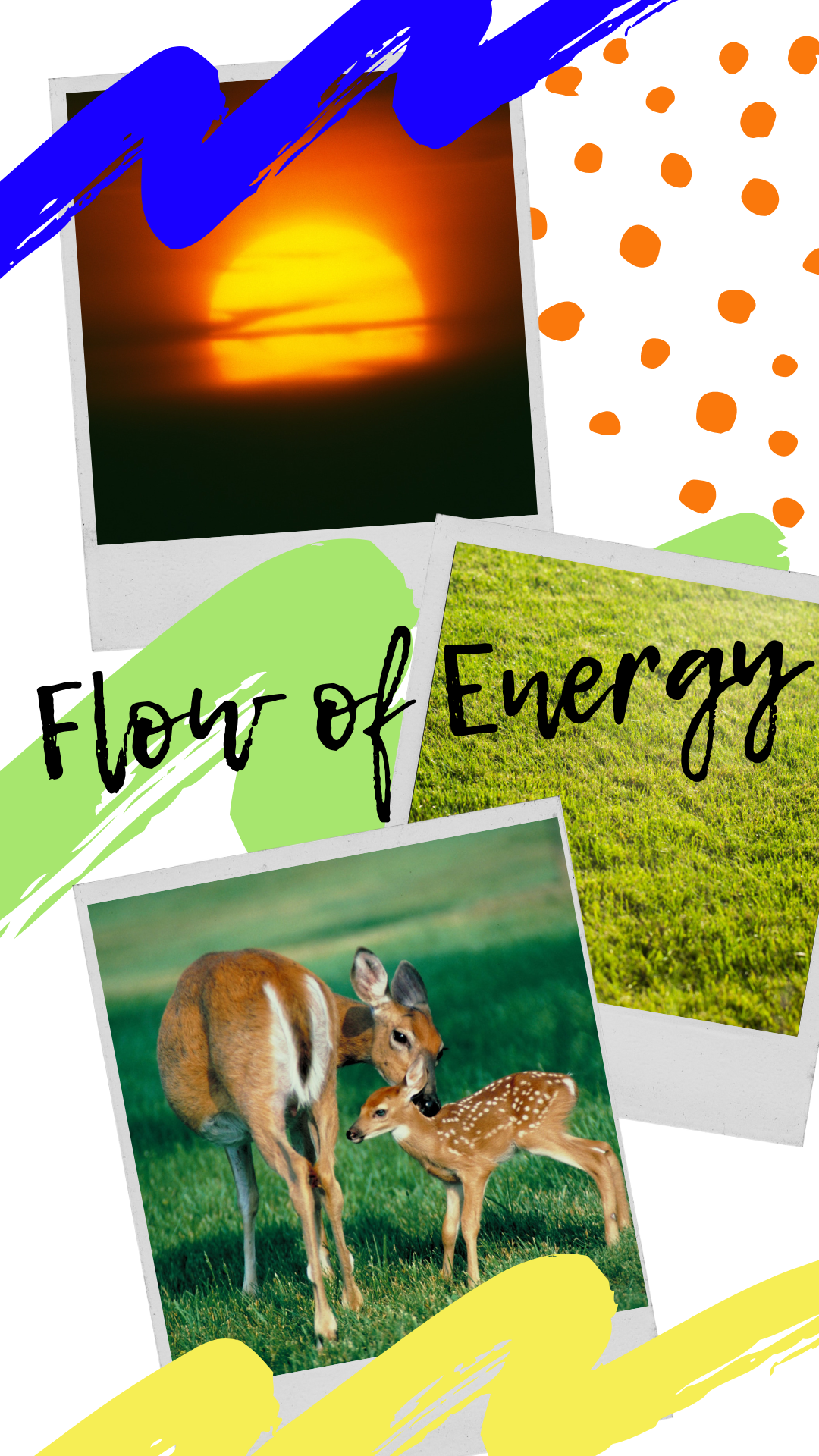 Energy Flow Through Living Systems Food Chains, Food