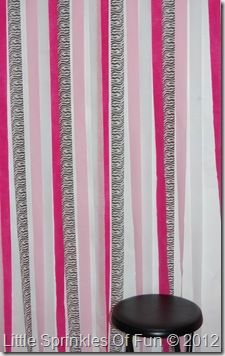 Crepe Paper Streamers Hung On Picture Hanging Wire Zebra And
