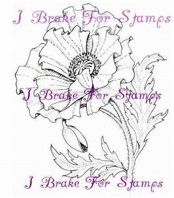 I Brake for Stamps Flower California Poppy