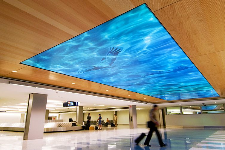 Migration By Marcia Stuermer Sacramento International Airport 2 Of 2 Kids Interior Design Ceiling Design Blog Wallpaper