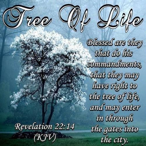 best inspirational bible verses kjv image collection