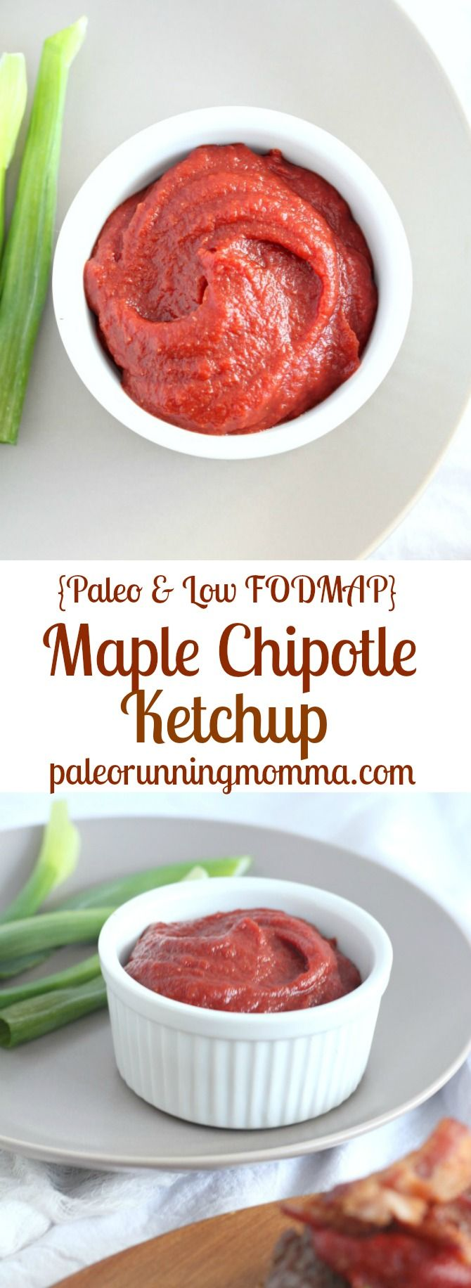 Maple Chipotle Ketchup Paleo Low Fodmap Recipe Low Fodmap Recipes Fodmap Recipes Paleo Condiments