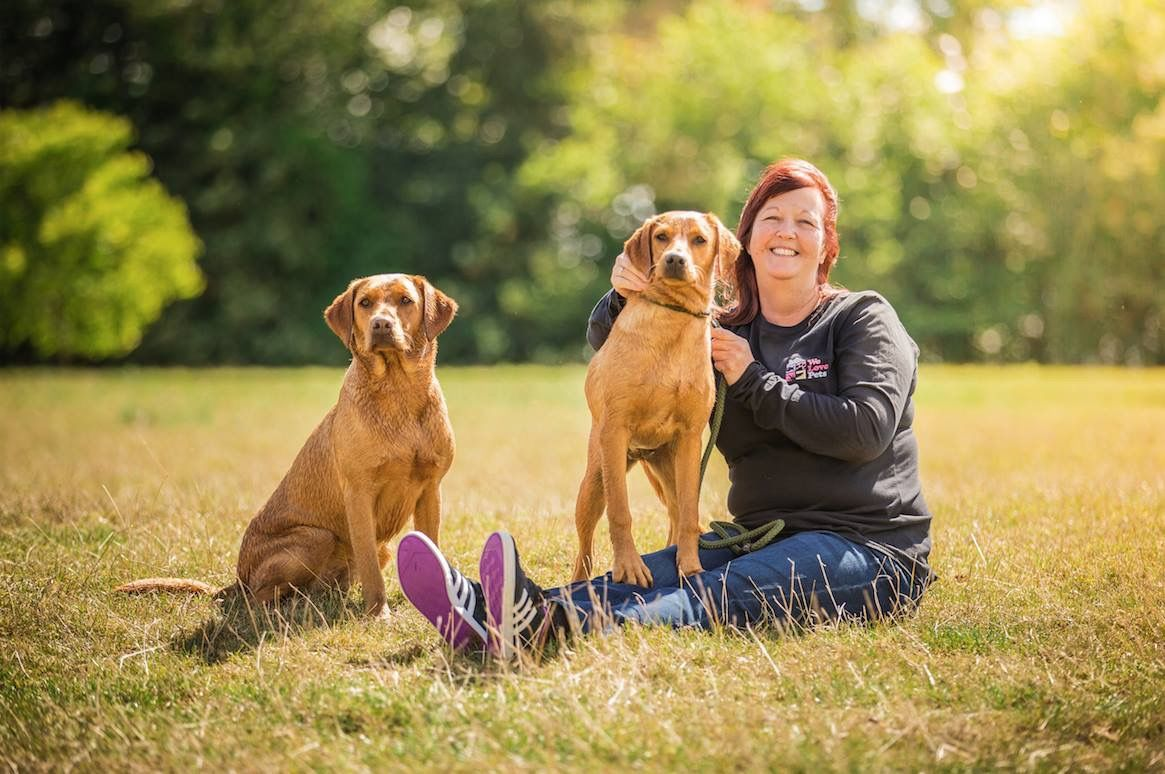 Dog Walker Pet Sitter Licensed Dog Boarding In Grays Pet