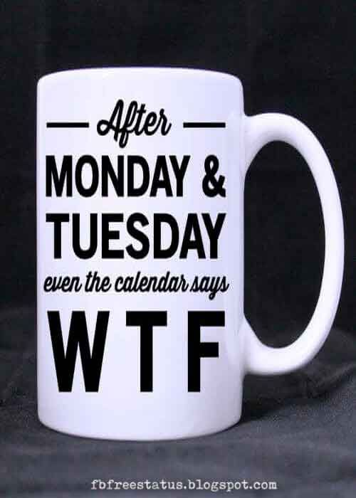 Happy Funny Tuesday Quotes With Images