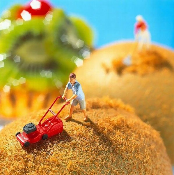 Miniam: Art consisting of Tiny Toy Figures and Food.