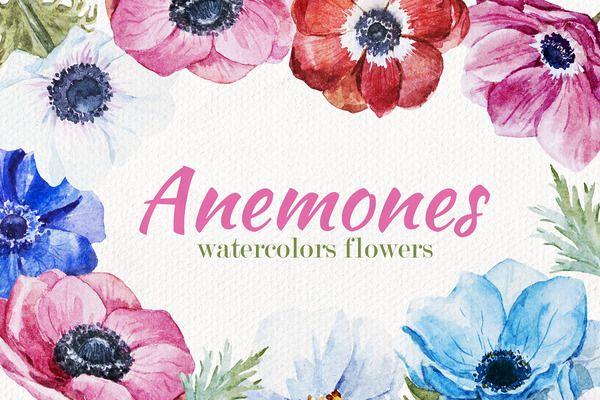 Anemones Flower Set by Lembrik's Artworks on Creative Market