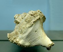 Império acadiano. Escudo do mar de um murex com o nome de Rimush , rei de Kish, ca. 2270 aC, Louvre , negociadas a partir da costa do Mediterrâneo, onde ele foi usado por cananeus para fazer uma tintura roxa.
