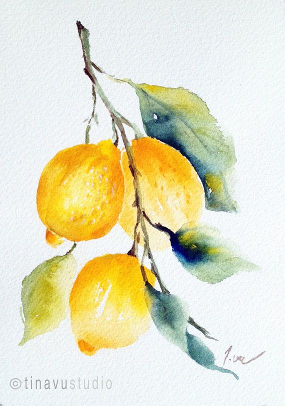 Lemon Painting Lemon Art Original Watercolor Painting Fruit