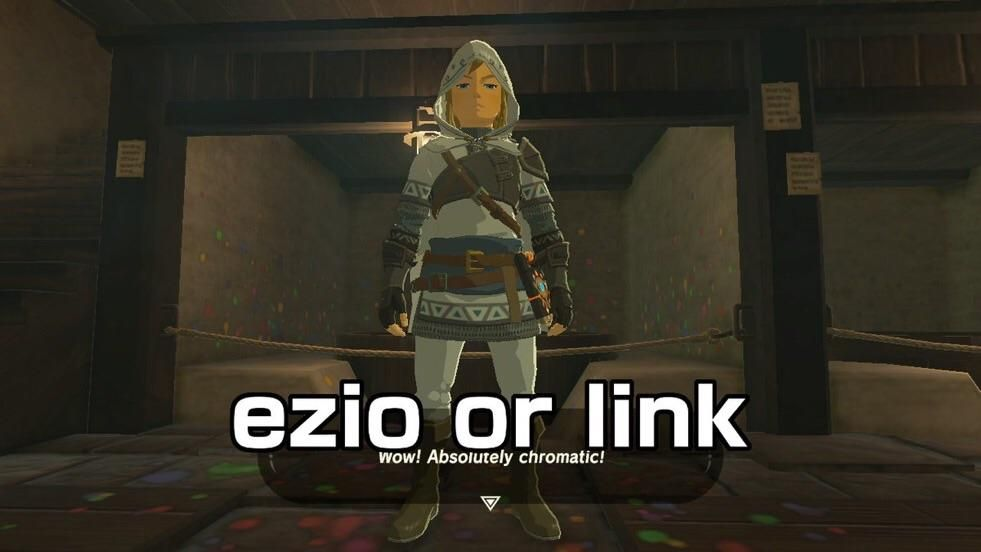 You got Assassin's Creed in my Zelda
