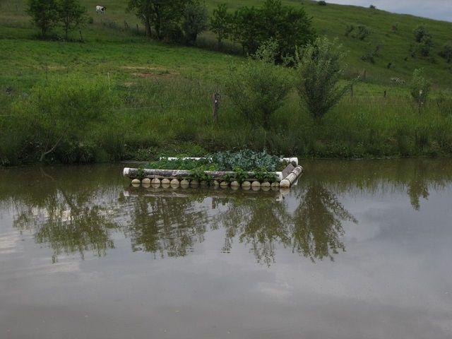 Floating Vegetable Garden Floating Garden Aquaponics 400 x 300