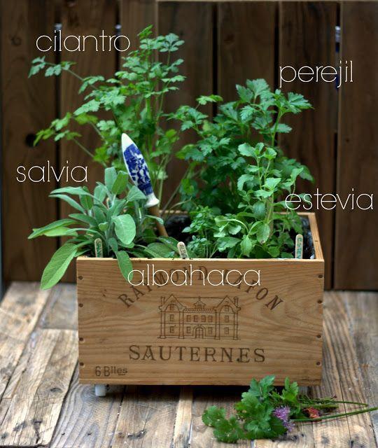 Alas cultiva huerto urbano en m xico df proyect green for Jardineria al aire libre casa pendiente