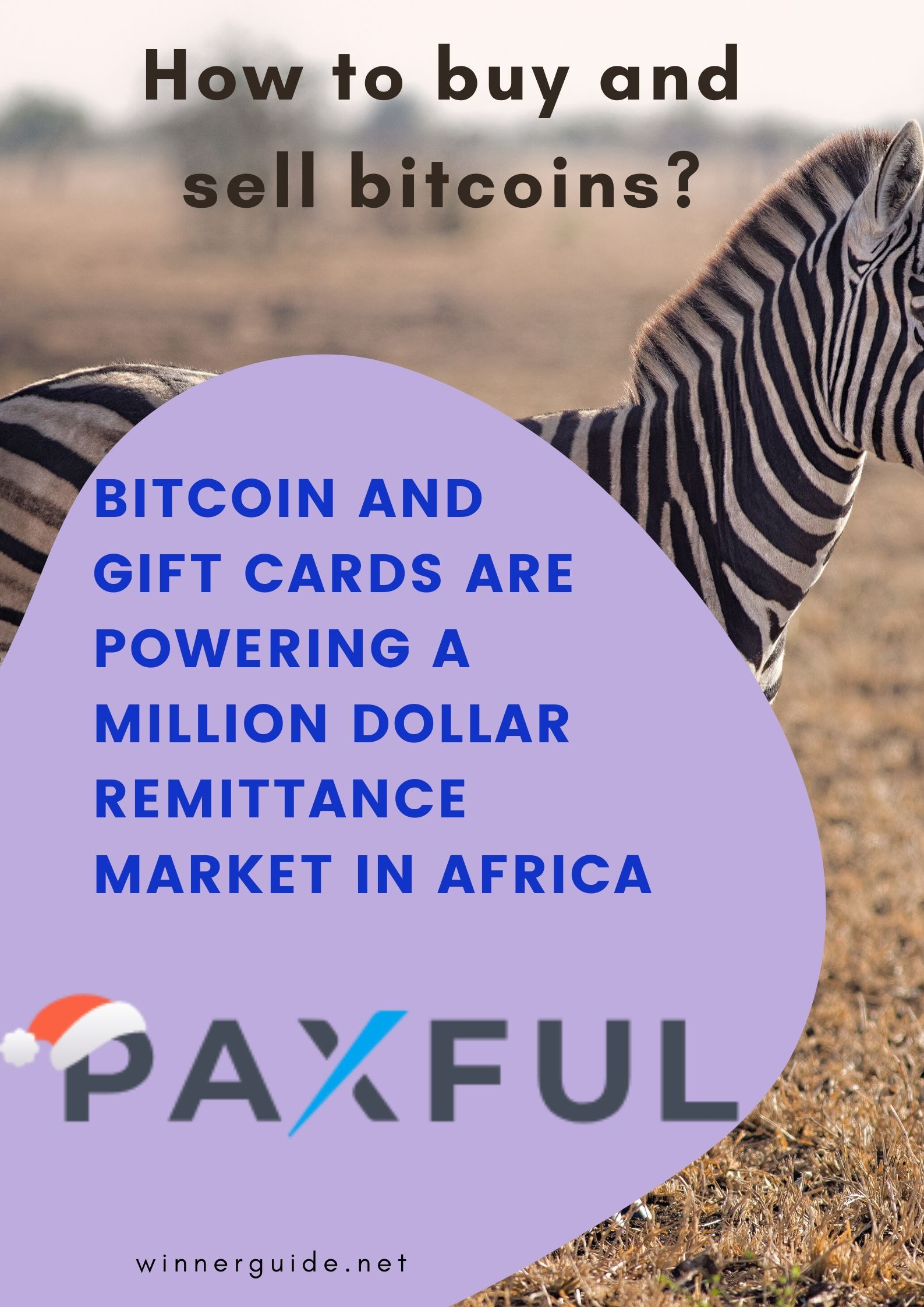 cryptocurrency market in africa
