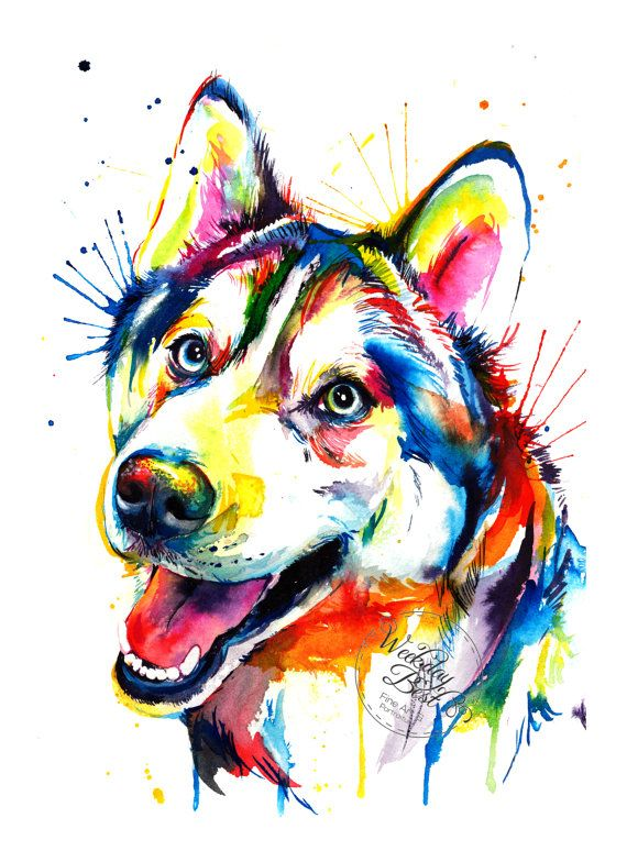 Colorful Siberian Husky Art Print Print Of My Original