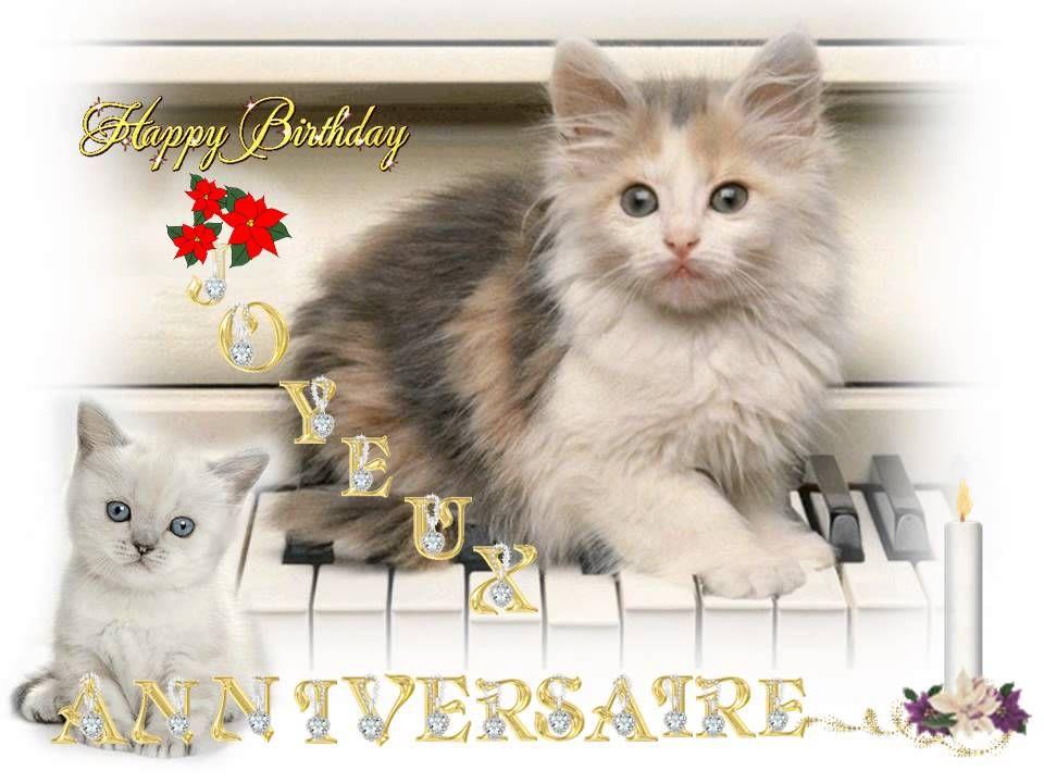 Anniversaires Cartes Virtuelles Carte Anniversaire Chat Carte Anniversaire Musicale Carte Anniversaire Animée