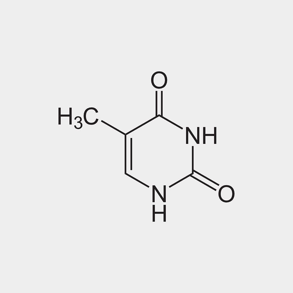hight resolution of thymine a m n t thy is one of the four nucleobases in the